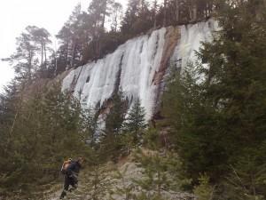 Finnskogen