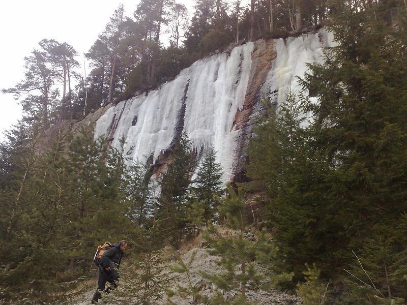 Finnskogen 1