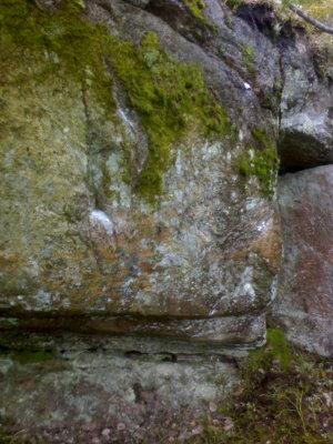 Trollskogen-wall-a-a4